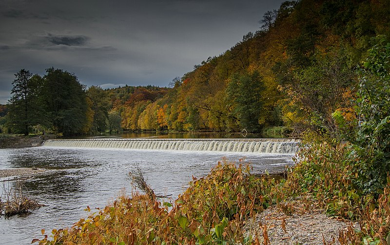 Осень в Германии. Свободное изображение Википедии. Автор фотоизображения Hedwig Storch.