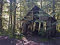 Dilapidated Cabin near Opal Creek Wilderness Willamette National Forest (25940953476).jpg
