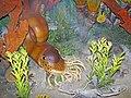 Diorama of a Pennsylanian seafloor - nautiloid, productid brachiopod, sponges, algae, gastropod (43774118630).jpg