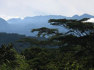 Boquete, Chiriquí - Hills of Boquete