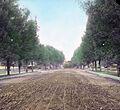Dirt Road (5168252004).jpg