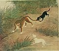 Dogs of China and Japan in nature and art (1921) (20963186126).jpg