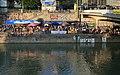 Donaukanaltreiben 2012 03.jpg