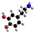Dopamine-3D-struct.png