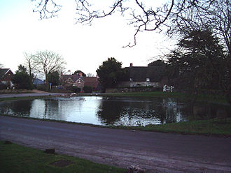 Cranborne Chase - Ashmore pond