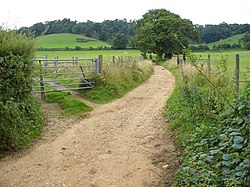 Downs Link Footpath.jpg