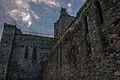 Dunbrody Abbey 2.jpg