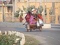 Dwarkadhish Temple - Jagat Mandir - Dwarakadheesh and surroundings during Dwaraka DWARASPDB 2015 (77).jpg