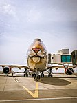 EI-XLD Boeing B747-400.jpg