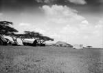 ETH-BIB-Hütten im Camp Serengeti-Kilimanjaroflug 1929-30-LBS MH02-07-0499.tif