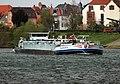 Edingen-Neckarhausen - Taunus II - 2019-04-12 14-13-51.jpg