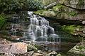 Elakala Falls 2 Picture 2 Edited.jpg