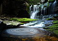 Elakala Waterfalls pub8 - West Virginia - ForestWander.jpg