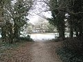 Emerging from the thicket on the footpath through Rowlands Castle Golf Club - geograph.org.uk - 1118714.jpg