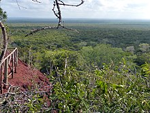 Endless Africa. Arabuko Sokoke Forest - panoramio.jpg