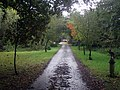 Entrance track to Tile Hurst Farm - geograph.org.uk - 1528650.jpg