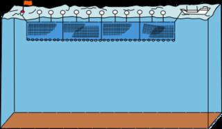 Drift netting