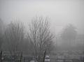 Estacionamento privativo da pousada num dia de nevoeiro.jpg