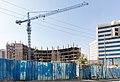 Ethiopia IMG 4861 Addis Abeba (39504168012).jpg
