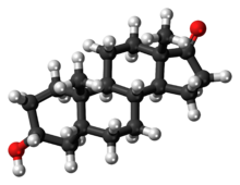 Ball-and-stick model of the etiocholanolone molecule