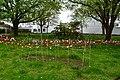 Exeter (2021-05-07) 03.jpg