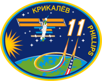Expedition 11 insignia (iss patch).png