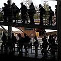 Expo 2015 (38647289855).jpg