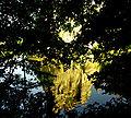 Externsteine, Spiegelung im Wiembecke-Teich.jpg