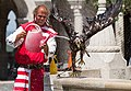 Falconer at Fisherman's Bastion trying to cool off his eagle.jpg