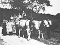 Familie Brodbeck mit Ochsengespann auf der Wanne (DaT288B).jpg