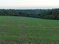 Farmland and woods near Ramsbury - geograph.org.uk - 267585.jpg