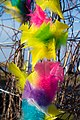 Feathers (16445308954).jpg