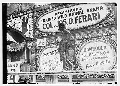 Dreamland s trained wild animal arena with colonel joseph gincomo
