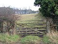 Field Entrance off Cliffe Road - geograph.org.uk - 1602045.jpg