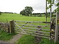 Field gate, and footpath to Bank House - geograph.org.uk - 1502797.jpg