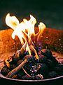 Fire-cooking-outdoors-camping (23696284934).jpg