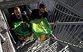 Flag Changing Ceremony from Imam Reza shrine, Mashhad - 8 October 2011 02.jpg
