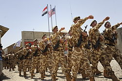 Flickr - DVIDSHUB - Romanian Soldiers Celebrate Completion of Mission in Iraq.jpg