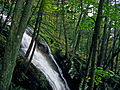 Flickr - Nicholas T - Buttermilk Falls (Side View).jpg