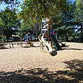 Folsom City Park 831 - panoramio.jpg