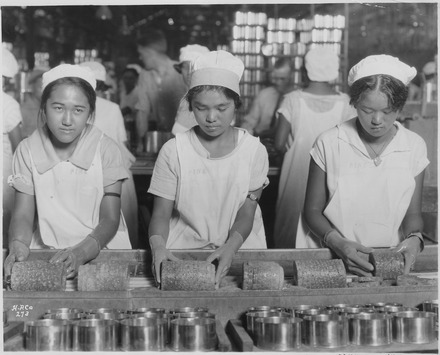 Prior to the postwar labor movement, Hawaii was governed by plantation owners. Here, three young women pack pineapples into cans in 1928. Food-Hawaii-Canning. Native girls packing pineapple into cans. - NARA - 522863.tif