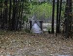 Foot Bridge at Oceana Pond 1 LR.jpg