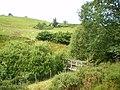 Footbridge over the Nant Nodwydd - geograph.org.uk - 1425031.jpg
