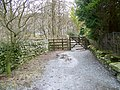 Footpath, Chapel Stile - geograph.org.uk - 1801951.jpg