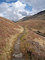 Footpath by Mosedale Beck - geograph.org.uk - 785294.jpg