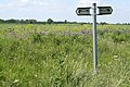 Footpath signpost - geograph.org.uk - 452197.jpg