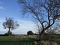 Footpath through fields near the A5 - geograph.org.uk - 325780.jpg