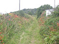 Footpath to Guval Downs - geograph.org.uk - 912970.jpg