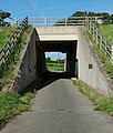 Footpath under A50 - geograph.org.uk - 241042.jpg