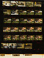 Ford A1751 NLGRF photo contact sheet (1974-11-04)(Gerald Ford Library).jpg
